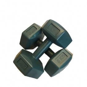 DUMBELL 2'Lİ SET (5'ER KİLO)